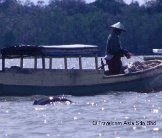 Irrawaddy & Fisherman Cropped